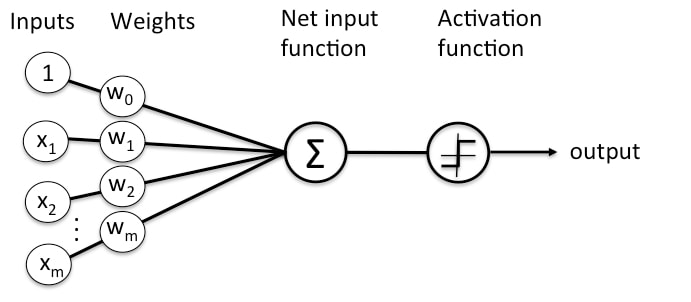 Neural Netwrok Representation of the Function