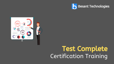 Test Complete Training in Chennai