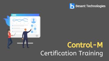 Control-M Training