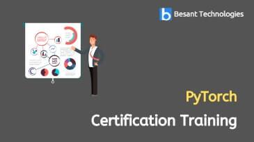 PyTorch Online Training